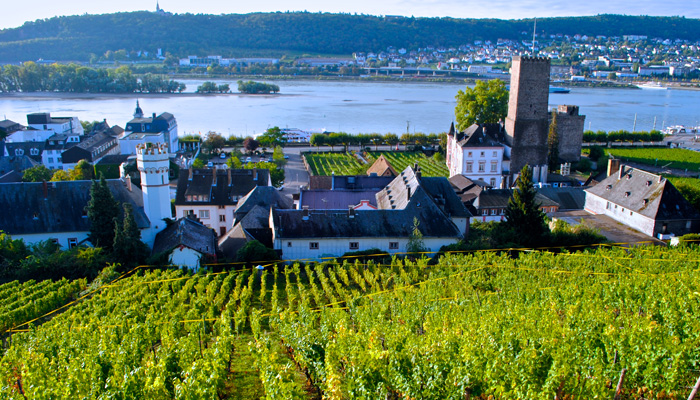 Germany 2016 Rudesheim A view from Leitz's Hinterhaus photo by KerryWinslow, grapelive.com